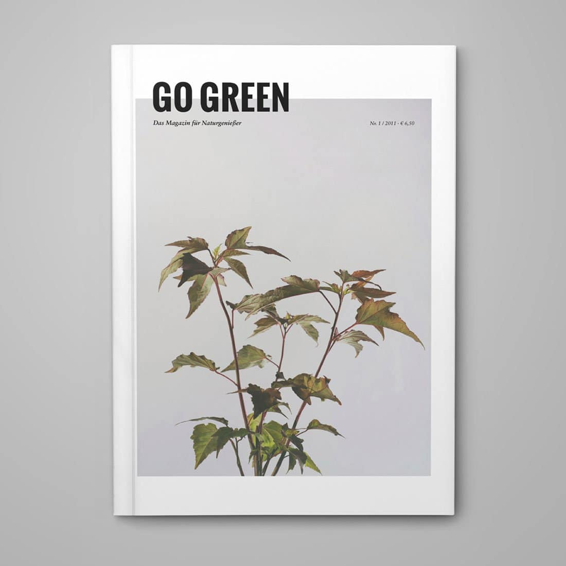 go-green-magazin-Cover